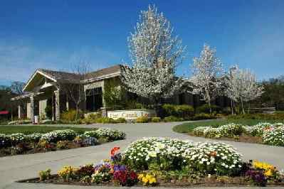 Clover Springs by Del Webb, California active adult