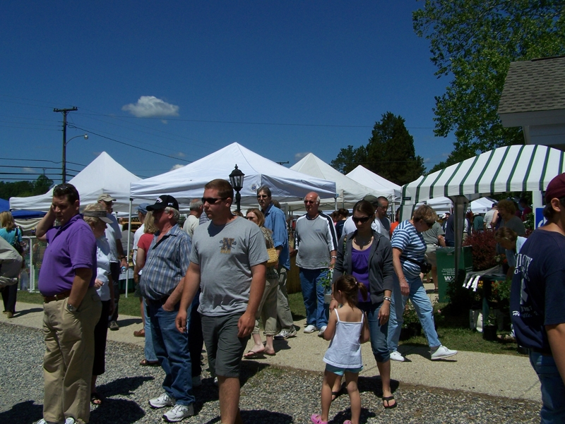 Crowds and vendors at the Strawberry Festival