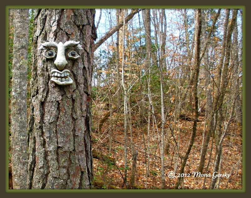 Tree Dude in Cowee copyright 2012 Mona Gersky