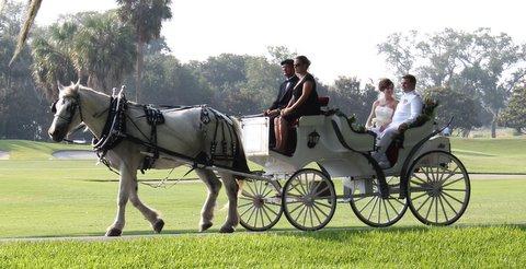 wedding carriage rides jekyll island ga - homes for sale brunswick ga