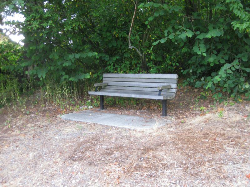 Sensational Cedar View Park Kirkland Washington Ncnpc Chair Design For Home Ncnpcorg