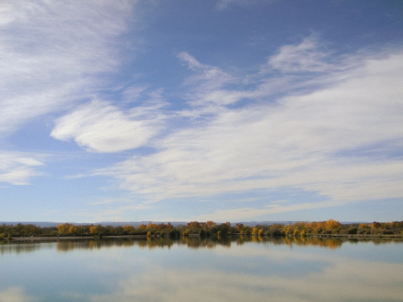 Confluence Park... A Wildlife and Outdoor Oasis in Delta, Colorado