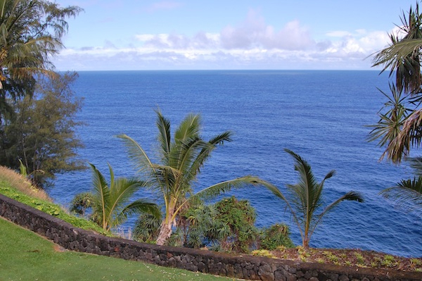 palms cliff house hilo hawaii