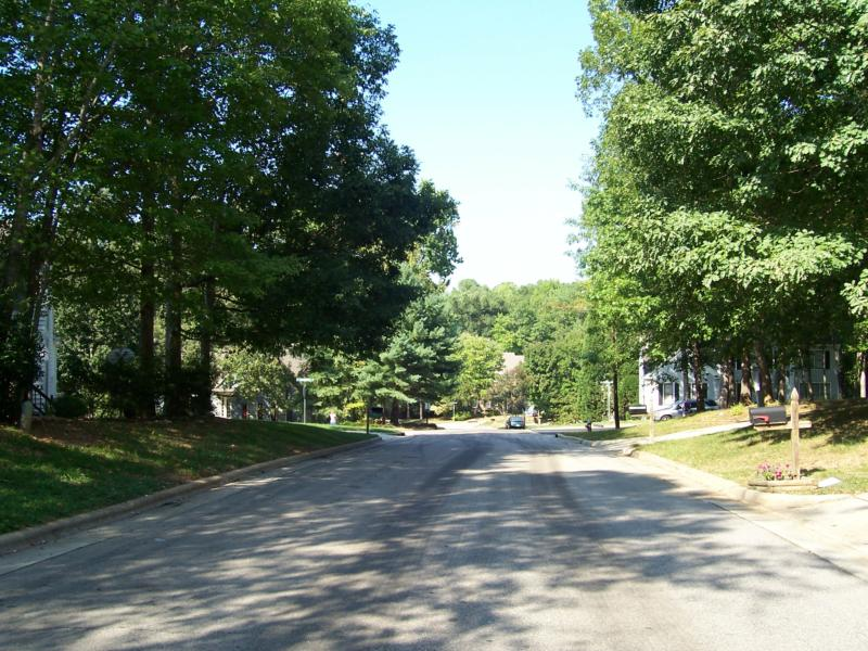 Cary, NC:  Tree-lined street in Wellington Place