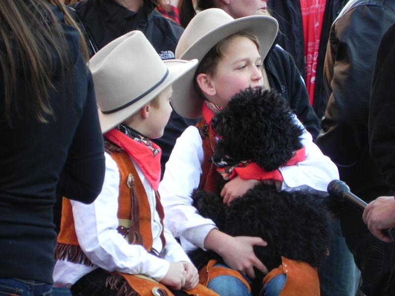 Mini Cowboys