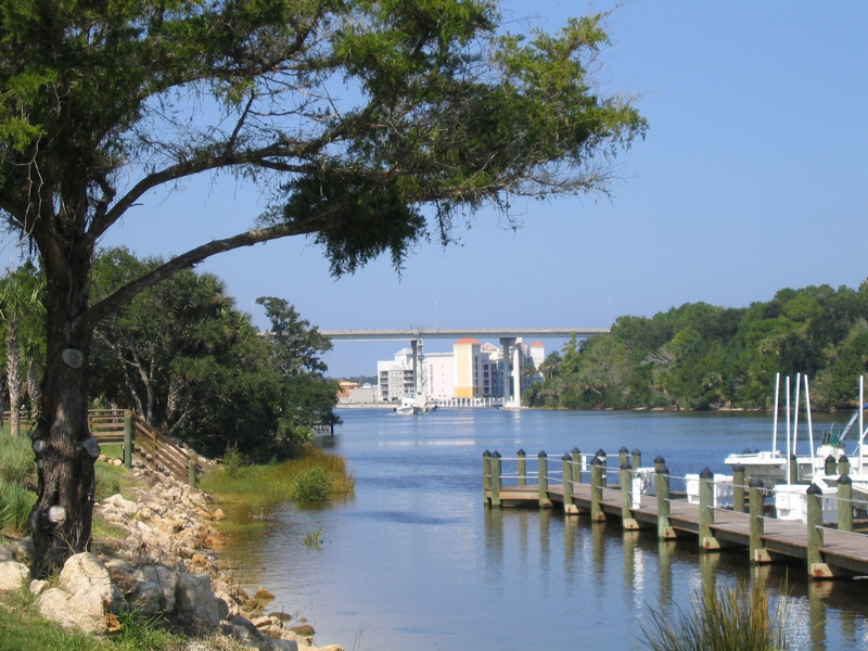 waterfront saltwater canal homes for sale in palm coast