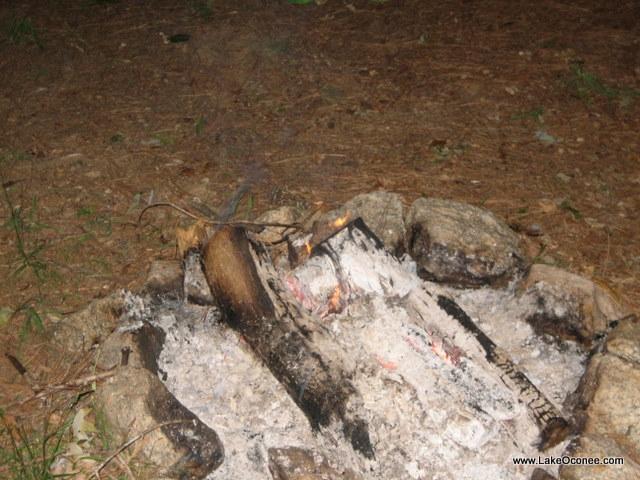 Lake Oconee Bonfire at Days End