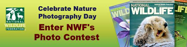 Celebrate Nature Photography Day