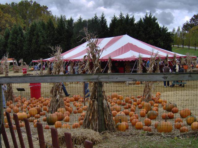 It 39 s that fall festival time of year again in anne arundel county for Homestead gardens fall festival