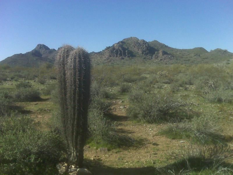 Phoenix Mountain Preserve