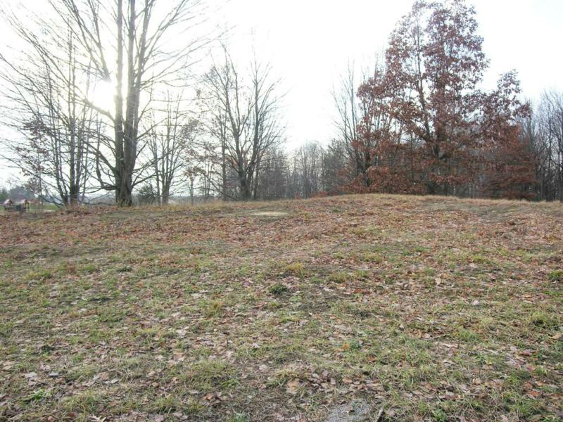 survey lot # 2 pleasantview lane dorr mi