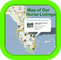 Map of Florida Horse Listings