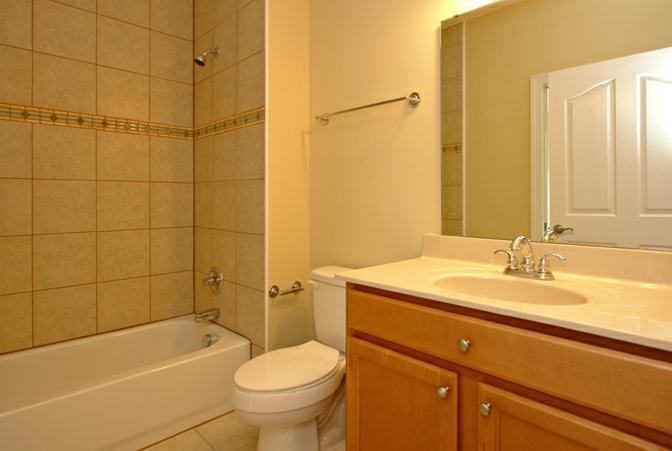 Bathroom Tile Design Custom Ideas Tub Shower Photos Homes Raleigh