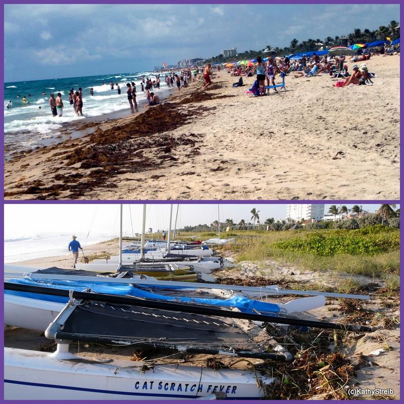 Delray Beach Tropical Storm Beach Photos And A Before
