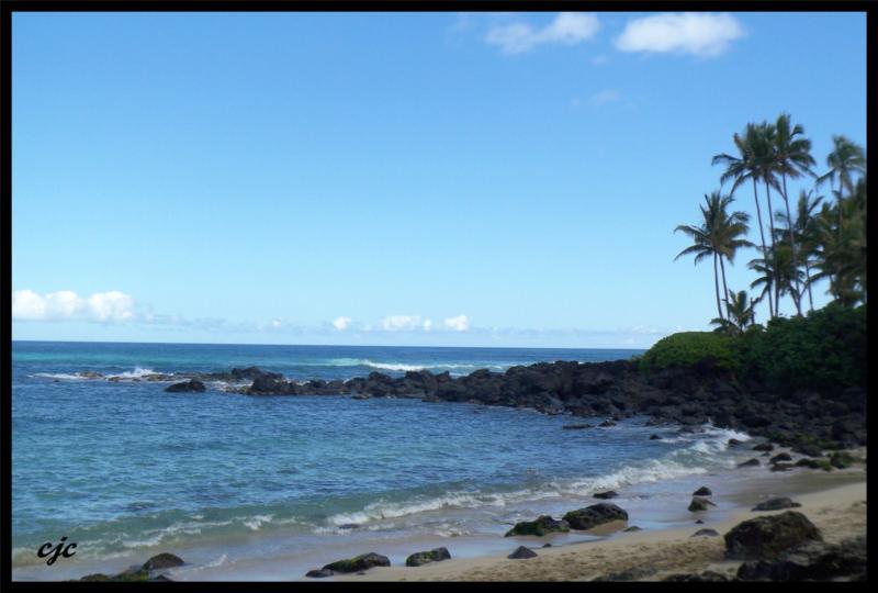 North Shore Real Estate Oahu Real Estate Hawaii