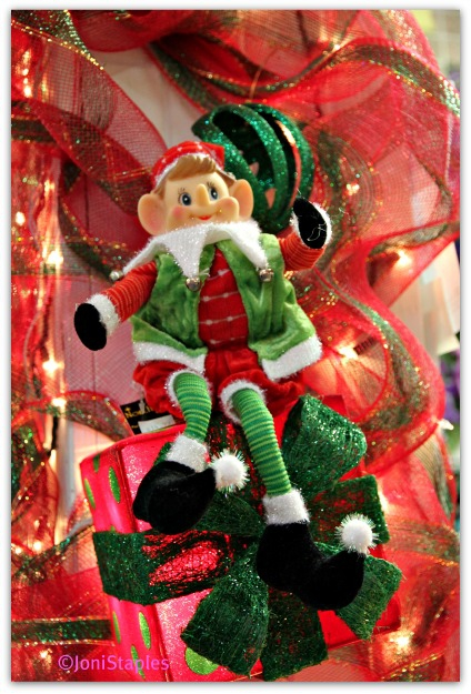 The Elf at Trinity Florist (C) Joni Staples
