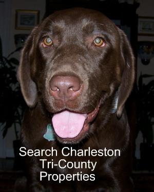 Search Charleston Tri-County