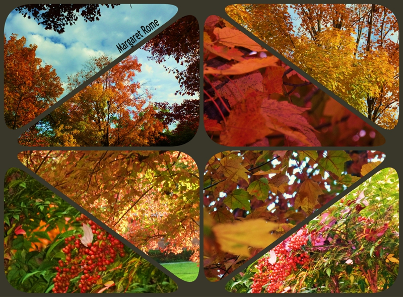 Leaf collage