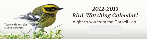 sign up for a 2013 bird calendar click link above