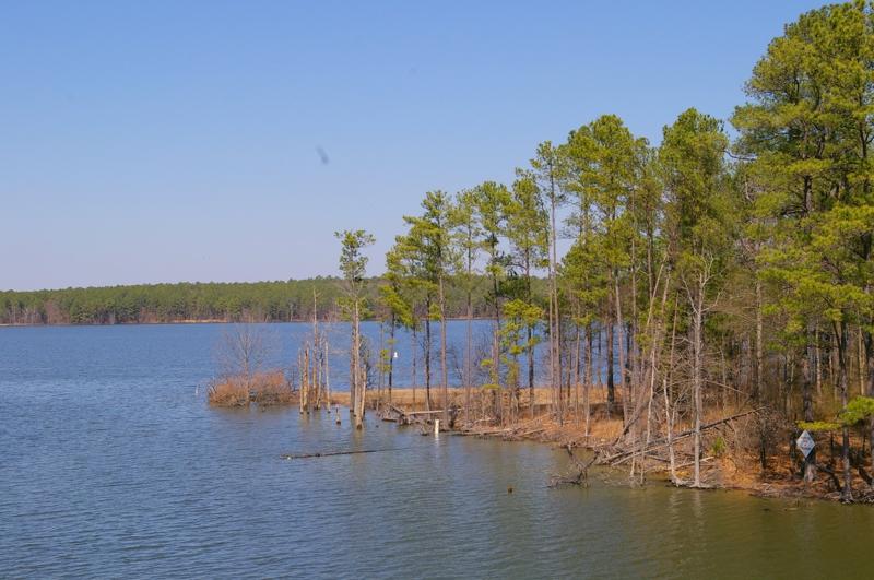 B. Everett Jordan Lake, North Carolina, US - Community and