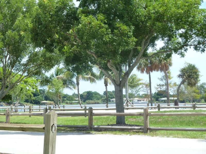 pet friendly housing boynton beach