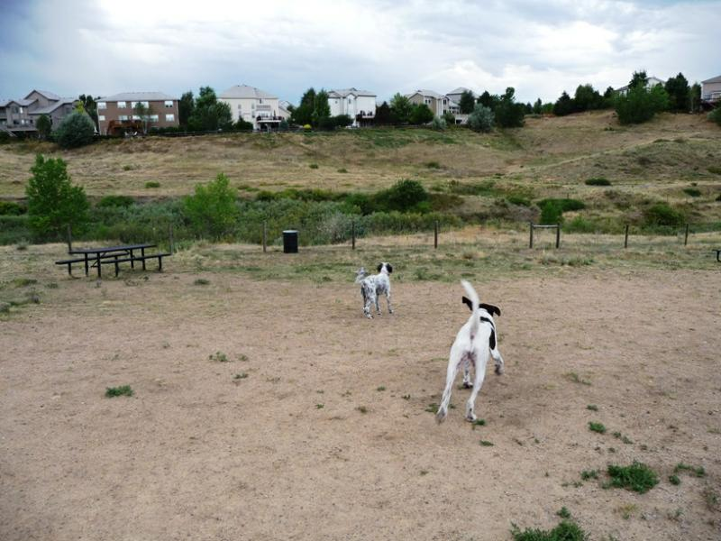 Highlands Ranch Pets - Dog Park in Highlands Ranch