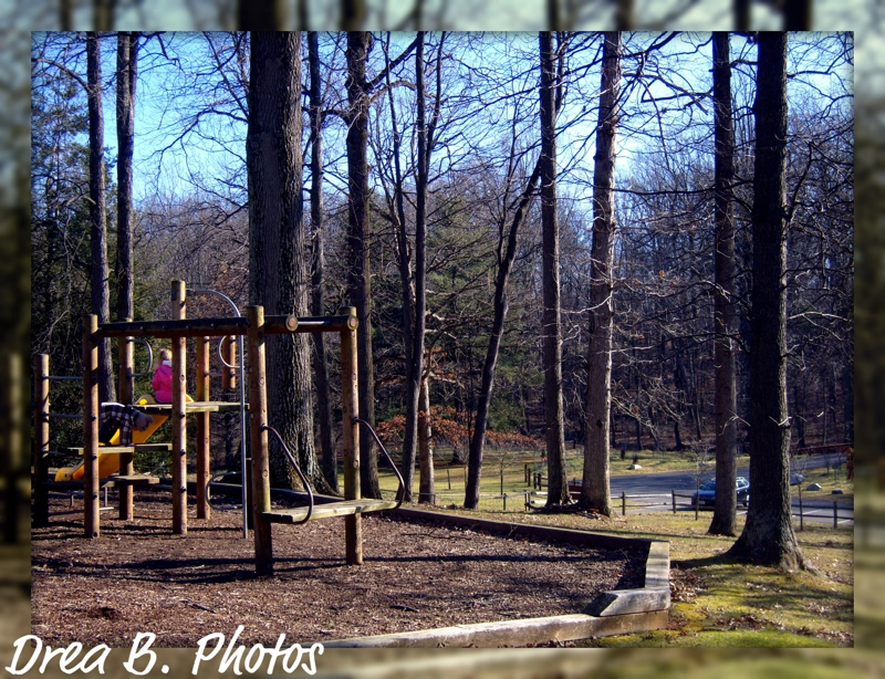 Maydale Park: playground