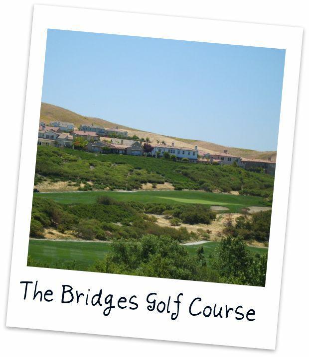 Homes For Sale Bridges San Ramon Ca