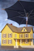 homestead exemption property tax value