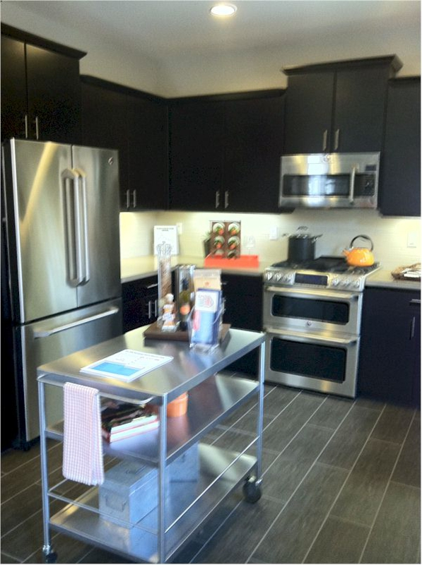 36 on Echo kitchens have stainless appliances and Ceasarstone countertops