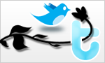 Use the powerful tools of Twitter to enhance your online marketing strategy