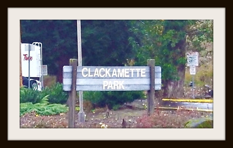Clackamette Park, answer to Where is it Wednesday...somewhere in Oregon City 11/16/11