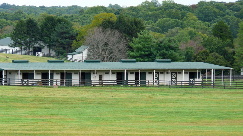 Prince William County Horse Farm