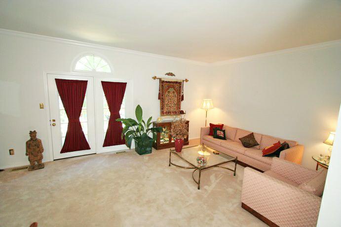 RAY TROG - Living Room
