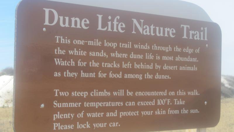 sign in the dunes