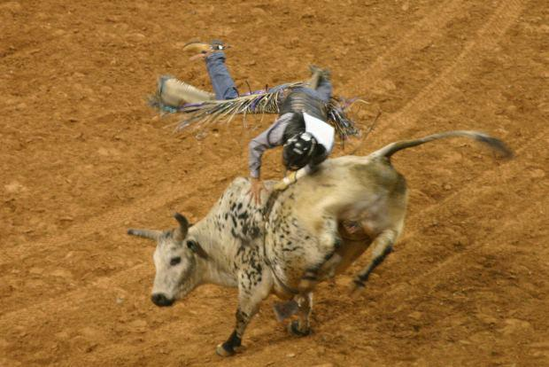 State Sport of South Dakota | Rodeo  |Texas State Sport Rodeo