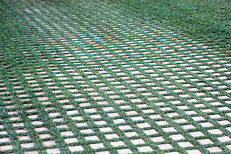 Brick and grass driveway