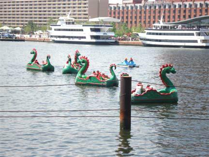Dragon Paddle Boats Baltimore
