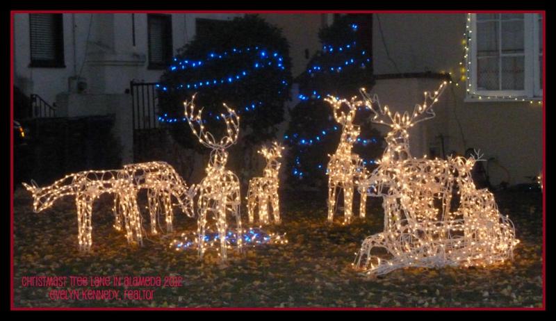 Santa Comes To Christmas Tree Lane In Alameda