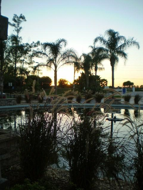 West Melbourne Florida - The Fountains