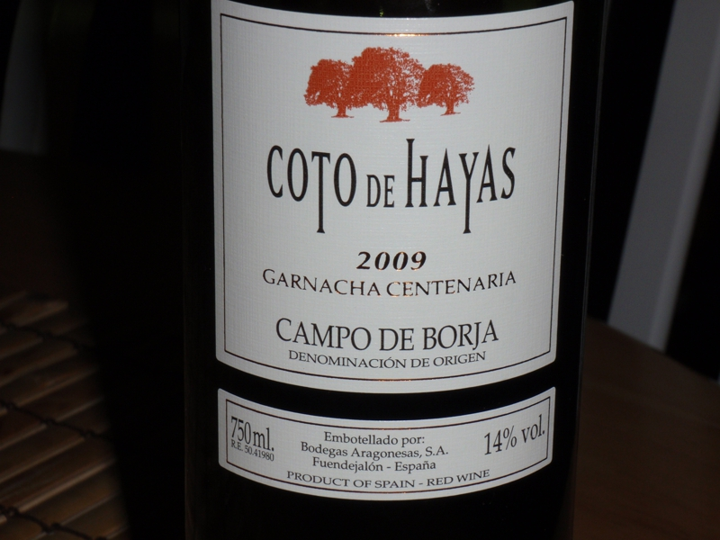 coto de Hayas great cheap red wine from spain