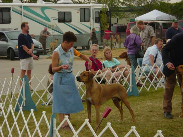 Clinton County Dog Show by Lucky Lang