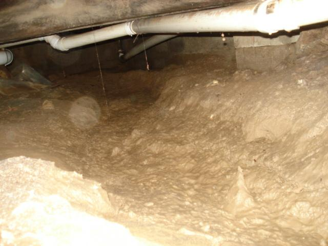 kentucky home inspector see the wet crawl space