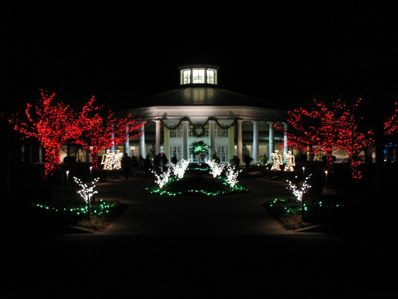 Daniel Stowe Botanical Garden Holiday Lights