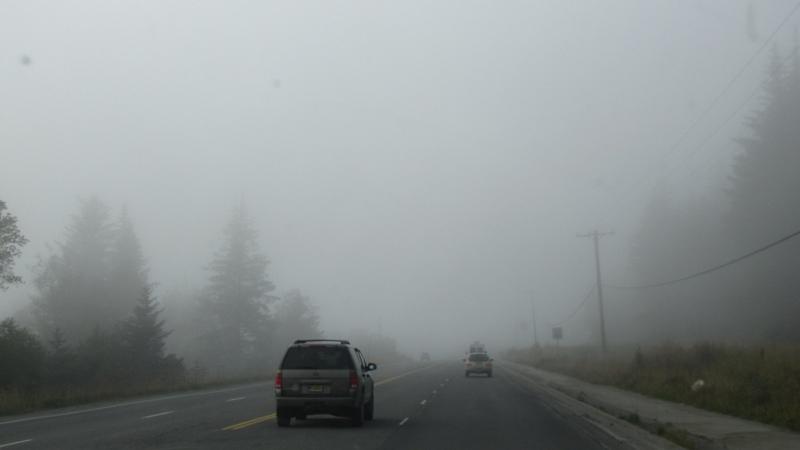 Fog In Homer Alaska