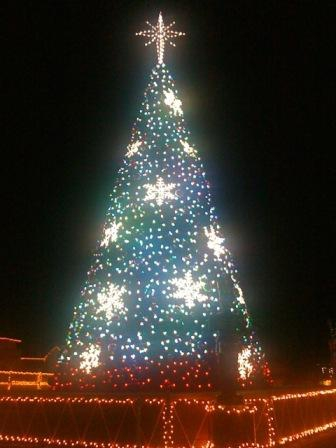 Mount Dora Christmas Tree