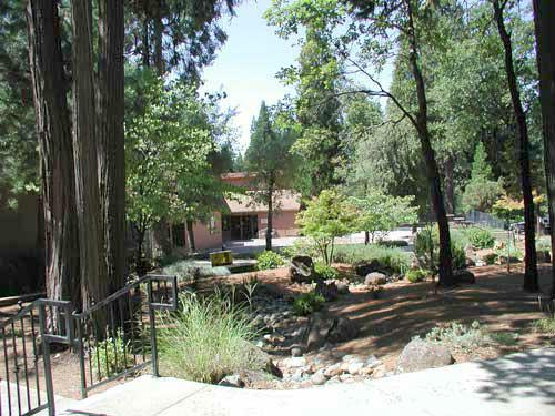 Property owners association in Paradise Pines