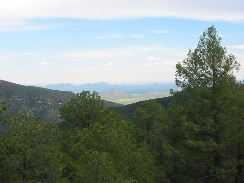 Coronado National Forest and Chiricahua National Monument views