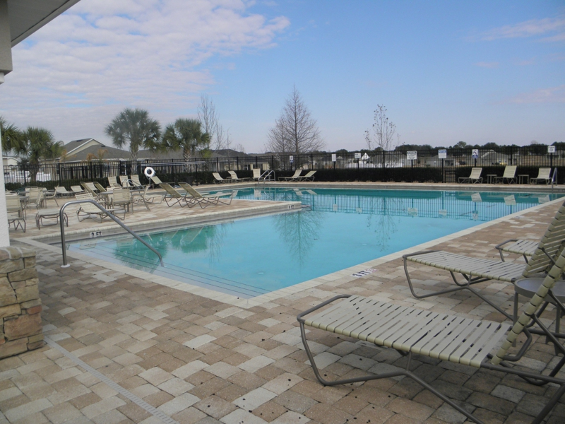 Spring Ridge In Brooksville Florida Pool