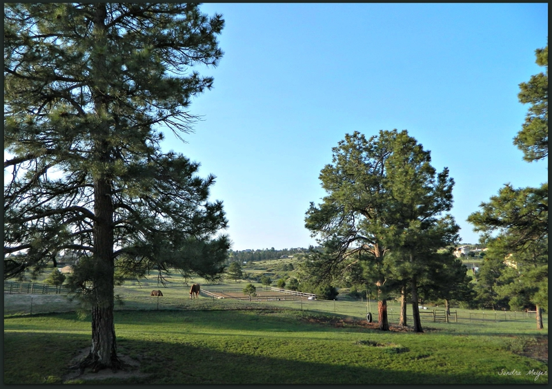 10208 Cherokee Trail Early Morning View of Riding Arena
